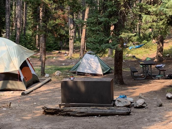 A photo of Site 25 of Loop Jenny Lake at Jenny Lake Campground with Picnic Table, Fire Pit, Food Storage, Tent Pad