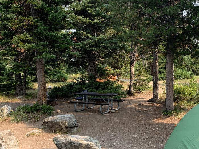 A photo of Site 7 of Loop Jenny Lake at Jenny Lake Campground with Picnic Table, Fire Pit, Food Storage, Tent Pad