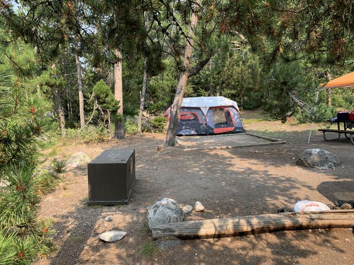 A photo of Site 10 of Loop Jenny Lake at Jenny Lake Campground with Picnic Table, Fire Pit, Food Storage, Tent Pad