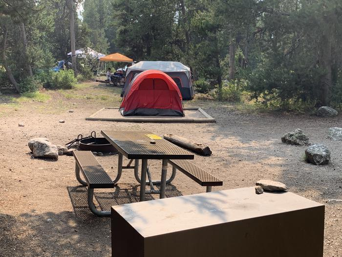 A photo of Site 13 of Loop Jenny Lake at Jenny Lake Campground with Picnic Table, Fire Pit, Food Storage, Tent Pad