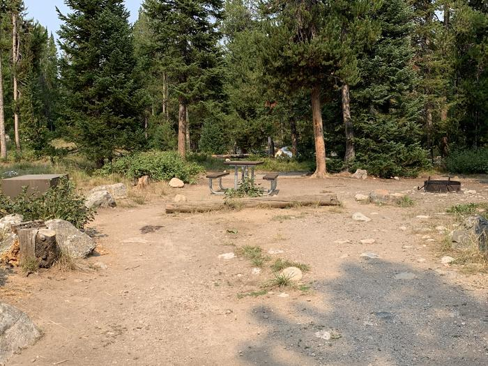 A photo of Site 16 of Loop Jenny Lake at Jenny Lake Campground with Picnic Table, Fire Pit, Food Storage, Tent Pad