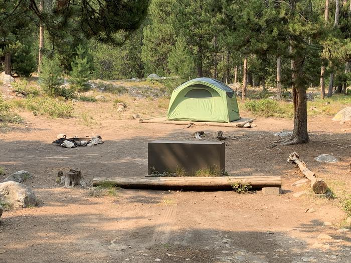 A photo of Site 22 of Loop Jenny Lake at Jenny Lake Campground with Picnic Table, Fire Pit, Food Storage, Tent Pad