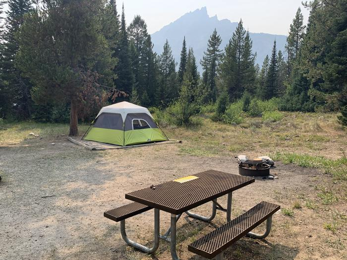 A photo of Site 37 of Loop Jenny Lake at Jenny Lake Campground with Picnic Table, Fire Pit, Food Storage, Tent Pad