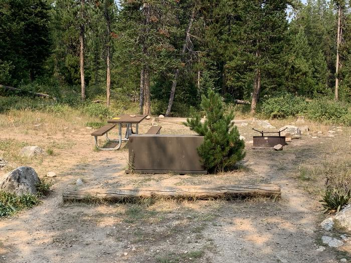 A photo of Site 15 of Loop Jenny Lake at Jenny Lake Campground with Picnic Table, Fire Pit, Food Storage, Tent Pad