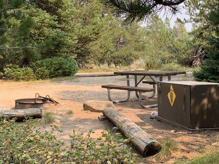 A photo of Site 32 of Loop Jenny Lake at Jenny Lake Campground with Picnic Table, Fire Pit, Food Storage, Tent Pad