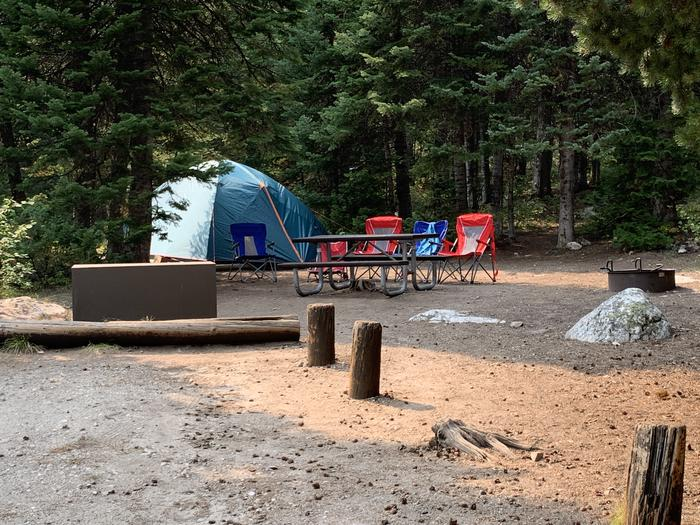 A photo of Site 36 of Loop Jenny Lake at Jenny Lake Campground with Picnic Table, Fire Pit, Food Storage, Tent Pad