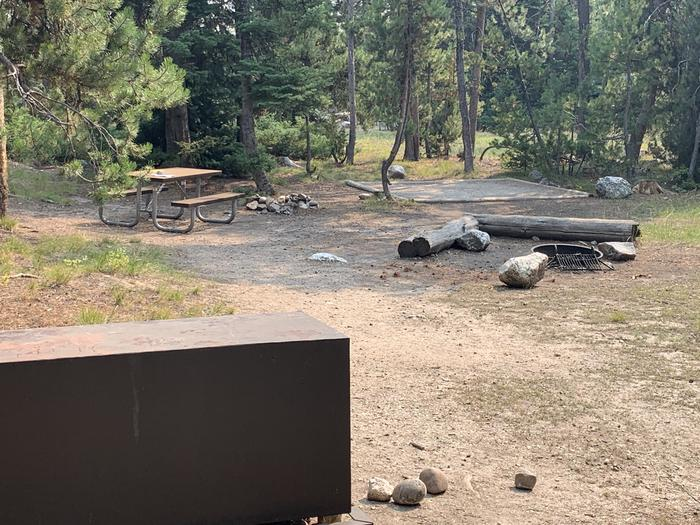 A photo of Site 28 of Loop Jenny Lake at Jenny Lake Campground with Picnic Table, Fire Pit, Food Storage, Tent Pad