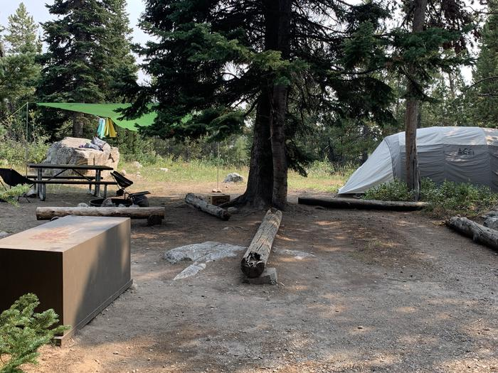 A photo of Site 35 of Loop Jenny Lake at Jenny Lake Campground with Picnic Table, Fire Pit, Food Storage, Tent Pad