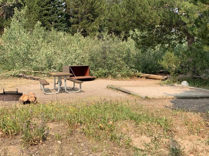 A photo of Site 41 of Loop Jenny Lake at Jenny Lake Campground with Picnic Table, Fire Pit, Food Storage, Tent Pad