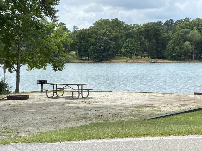 A photo of Site 12 of Loop SPRINGFIELD  at SPRINGFIELD with Picnic Table, Electricity Hookup, Fire Pit, Shade, Tent Pad, Waterfront, Lantern Pole, Water Hookup