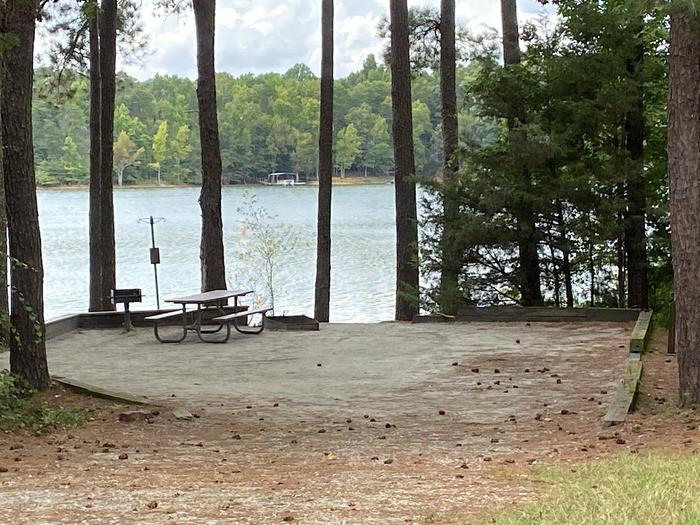 A photo of Site 06 of Loop SPRINGFIELD  at SPRINGFIELD with Picnic Table, Electricity Hookup, Fire Pit, Shade, Tent Pad, Waterfront, Water Hookup