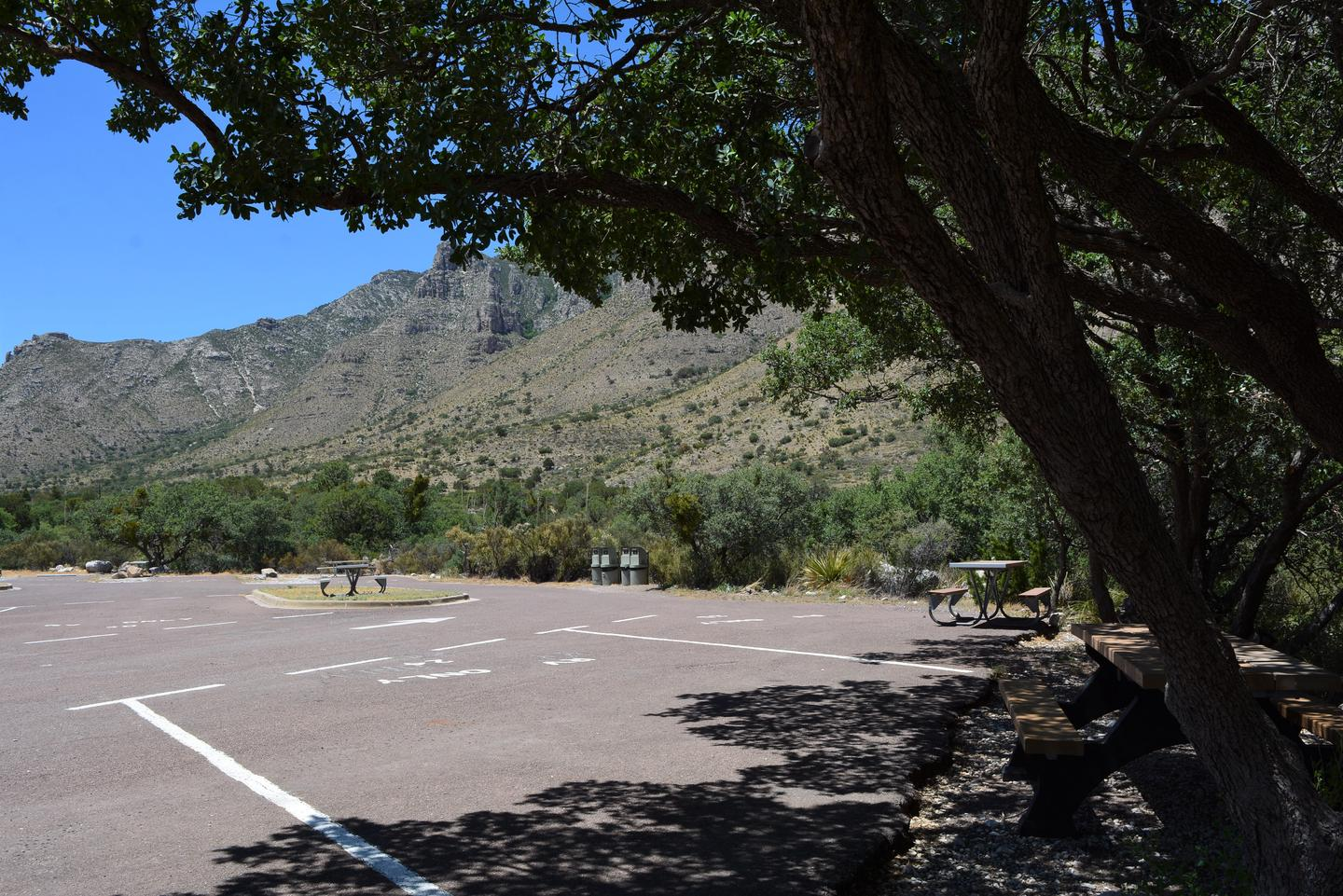 RV campsite 24 shown from the back edge of the site.  Trees provide some shade in the earlier times of the day.  Picnic table is just to edge of pavement. RV campsite 24 with some shade a picnic table and views of the mountains.