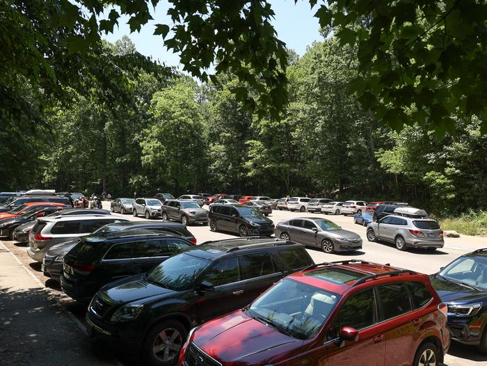 Preview photo of Great Smoky Mountains National Park Vehicle Reservations