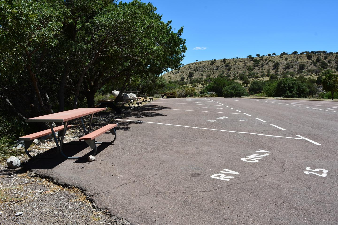 RV site 25 is located at the end of a row of 5 RV sites.  This view show the paved site with picnic table and trees along the back edge.RV site 25 is located at the end of a row of 5 RV sites. Low tree limbs may prevent high profile vehicles.