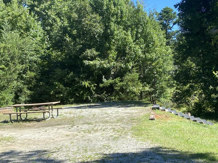 A photo of Site 66 of Loop SPRINGFIELD  at SPRINGFIELD with Picnic Table, Electricity Hookup, Fire Pit, Shade, Tent Pad, Waterfront, Lantern Pole, Water Hookup