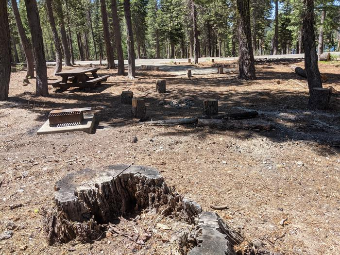 Wyandotte Site #18 Photo 1Site #18 with picnic table, grill, and fire ring in view