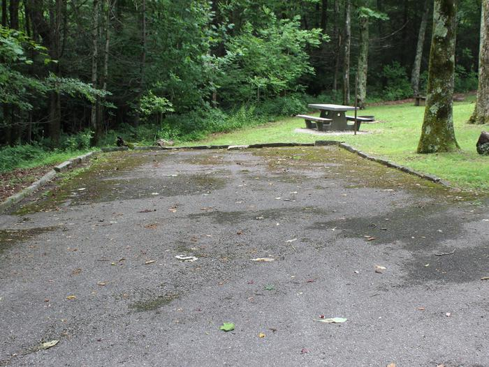 A Loop Site 5 - RV Non Electric