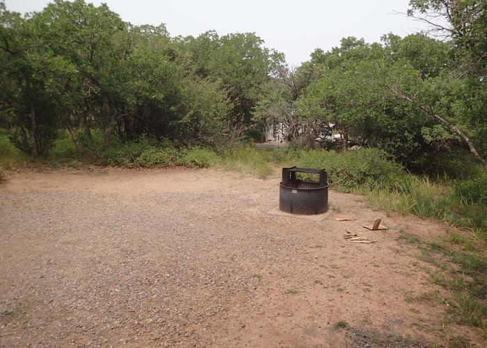 View of open area within Campsite A-006