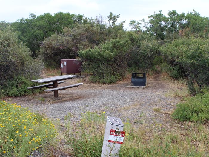View of Campsite A-001 from parking area