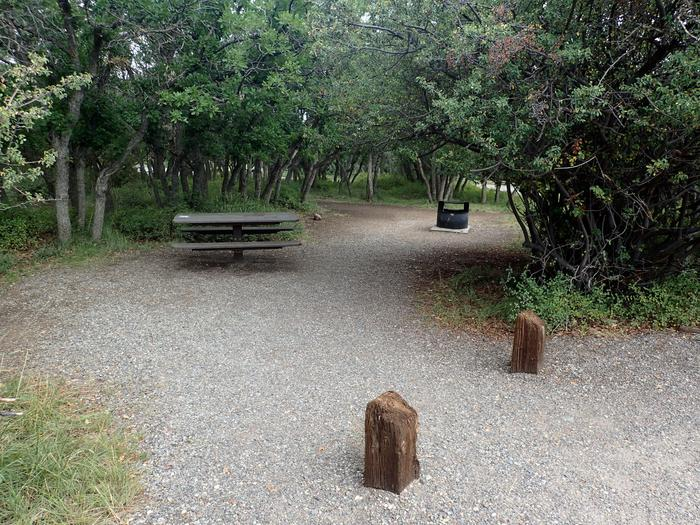 View of Campsite A-007