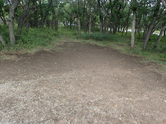 View of large tent space within Campsite A-007