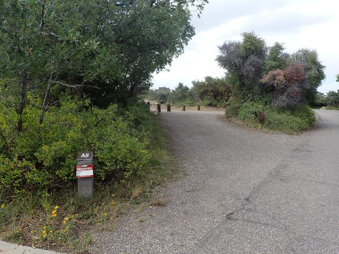 View of pull-through entrance into Campsite A-008