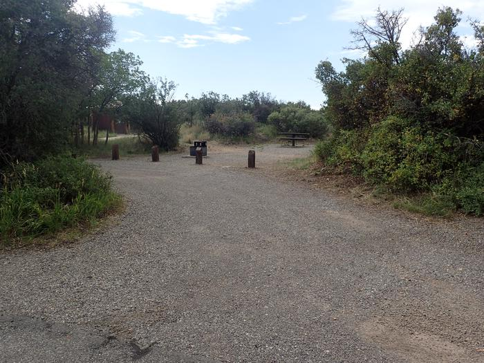 View of pull-through exit of Campsite A-008 from road