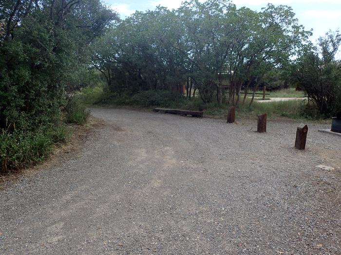 View of pull-through within Campsite A-008