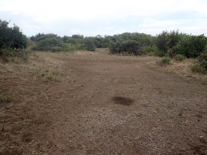 View of second potential tent location within Campsite A-012