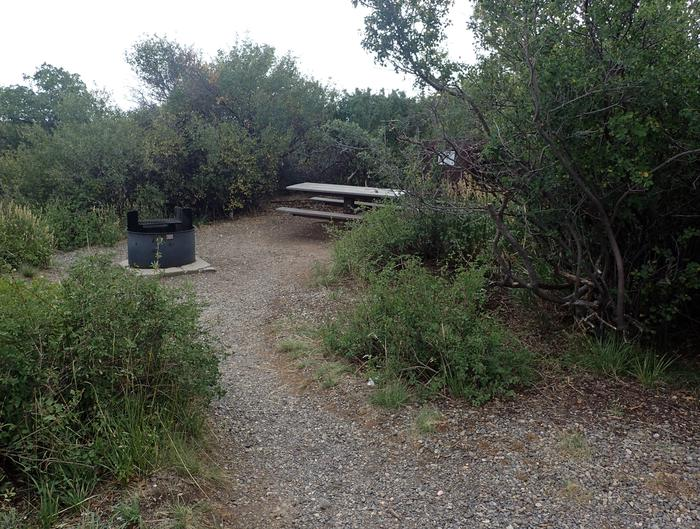 View of walkway leading into Campsite A-013