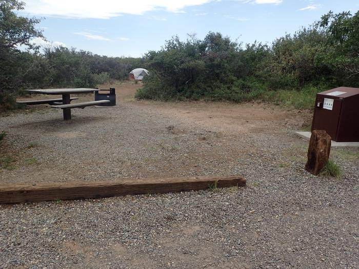 View of second small potential tent spot near bear box within Campsite A-015