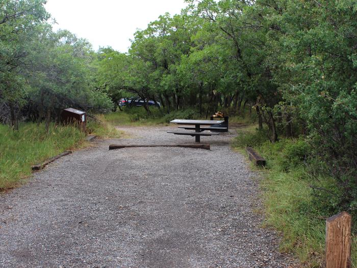 View of Campsite A-009 from parking area