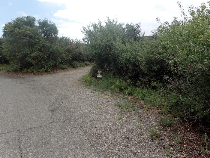 Drive-up view of Campsite A-018