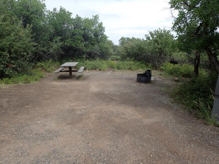 View of Campsite B-021