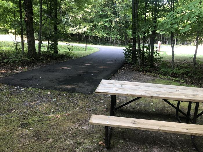 A photo of Site 001 of Loop 1 at Sylvania (Clark Lake) Campground with Picnic Table