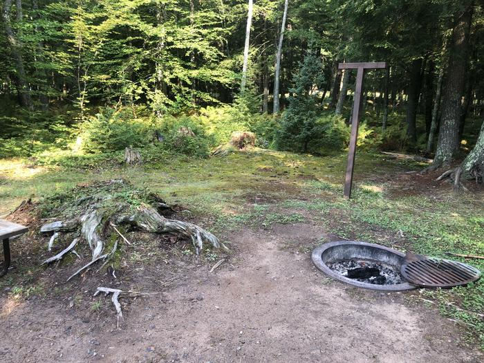 A photo of Site 023 of Loop 2 at Sylvania (Clark Lake) Campground with Fire Pit, Lantern Pole