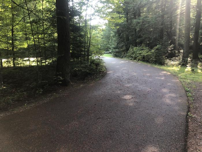 A photo of Site 018 of Loop 2 at Sylvania (Clark Lake) Campground with No Amenities Shown