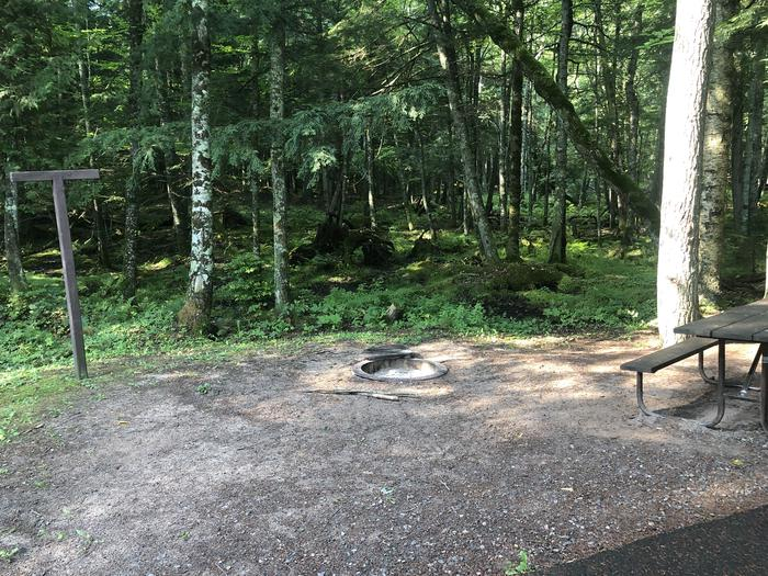 A photo of Site 018 of Loop 2 at Sylvania (Clark Lake) Campground with Picnic Table, Fire Pit, Shade, Lantern Pole