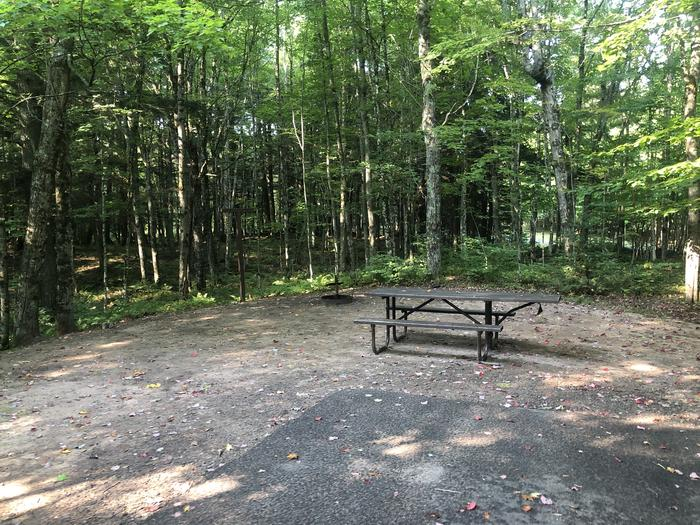 A photo of Site 002 of Loop 1 at Sylvania (Clark Lake) Campground with Picnic Table, Fire Pit, Lantern Pole