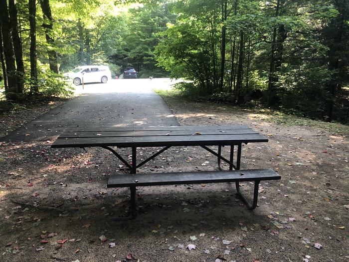 A photo of Site 002 of Loop 1 at Sylvania (Clark Lake) Campground with Picnic Table