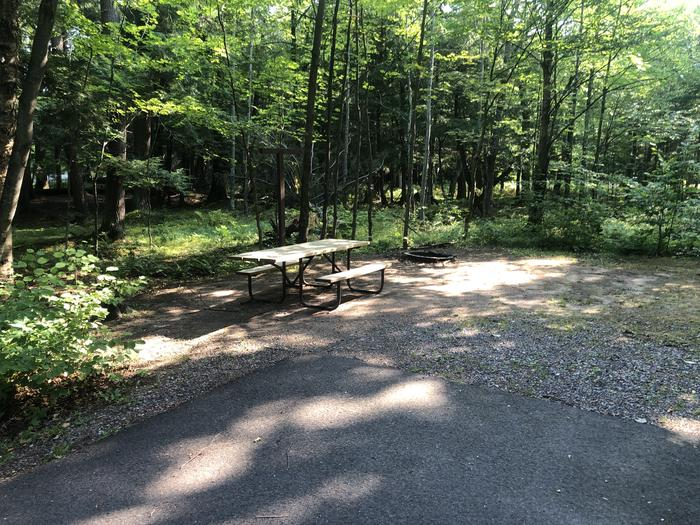 A photo of Site 014 of Loop 2 at Sylvania (Clark Lake) Campground with Picnic Table, Fire Pit, Shade, Lantern Pole