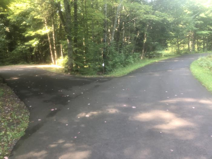 View of Driveway to the left