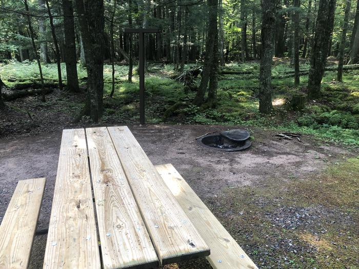 A photo of Site 019 of Loop 2 at Sylvania (Clark Lake) Campground with Picnic Table, Fire Pit, Shade, Lantern Pole