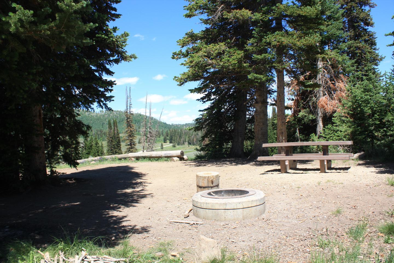 Lake Canyon Campground-  Site  38Lake Canyon Campground -  Site  38