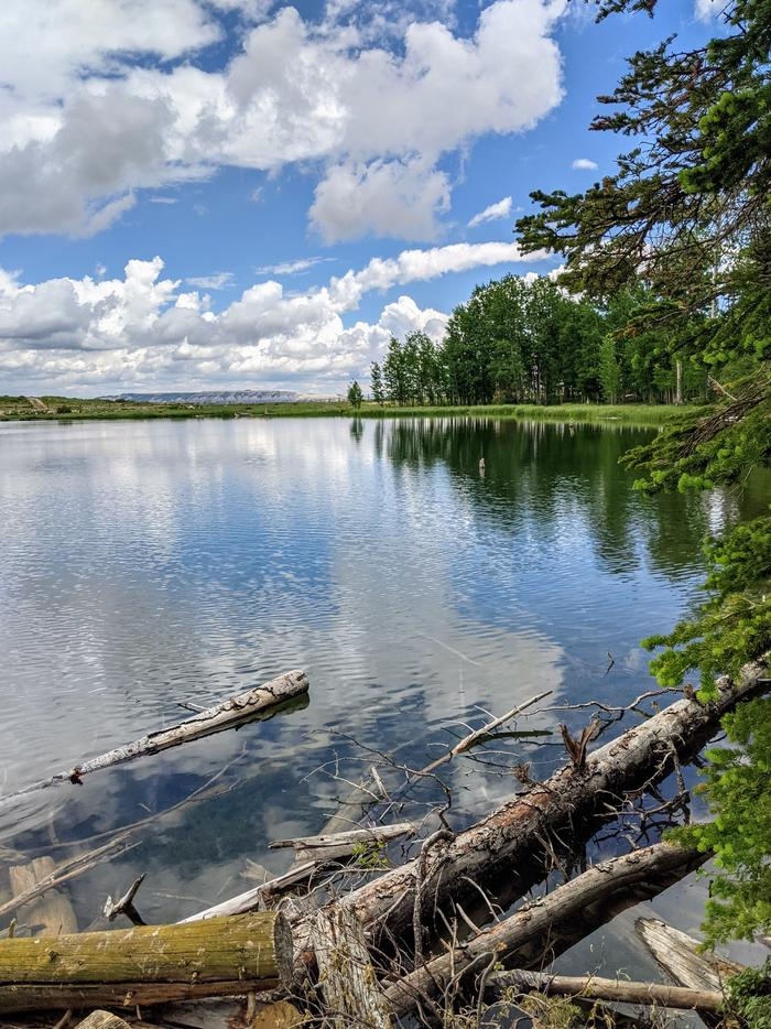Willow  Lake FishingWillow Lake Fishing
