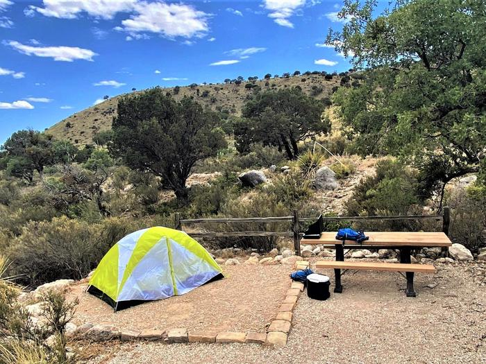 Campsite number 15 with a two-person tent displayed on the tent pad.  Picnic table is to the right side of the tent pad and there is a large tree to the right of the table.Campsite number 15 with a two-person tent displayed on the tent pad and viewed from the east side of campsite.