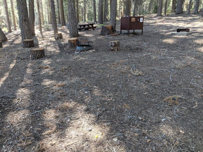 Little Beaver Site #6 Photo 3Site #6 with picnic table, bear box, fire ring, and grill in view