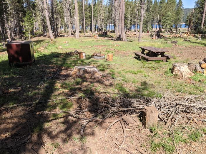 Little Beaver Site #9 Photo 2Site #9 with bear box, fir ring, and picnic table in view