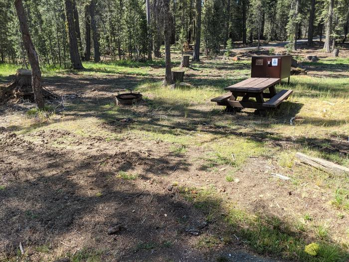 Little Beaver Site #13 Photo 1Site #13 with bear box, picnic table, and fire ring in view