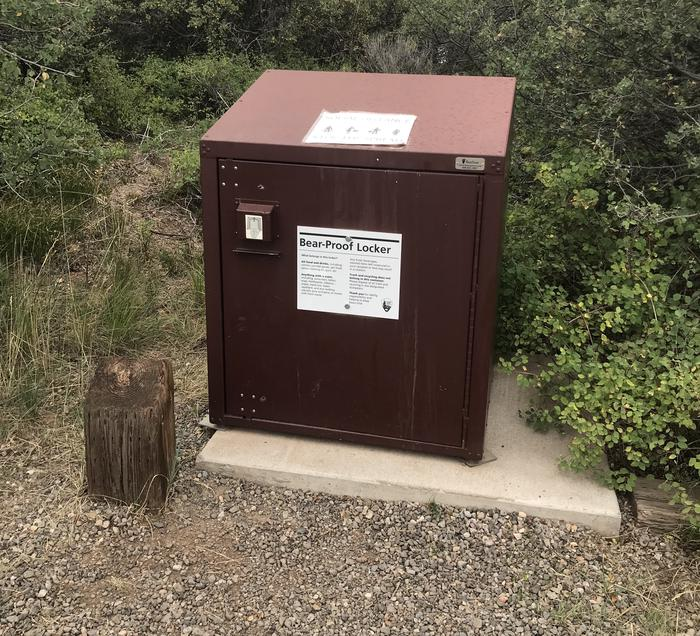 Bear box available in Campsite A-019